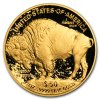Investiční zlatá mince Buffalo proof 1 Oz-2019