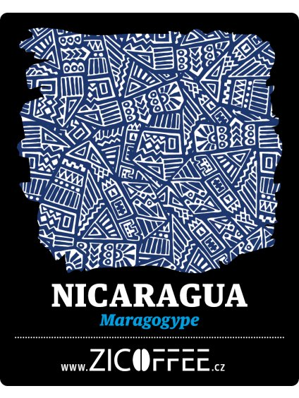Nicaragua web (1)