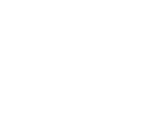 Zigmundo_footer_logo