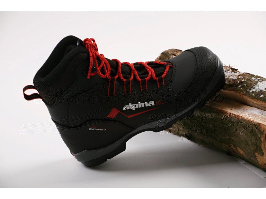 Backcountry bota Alpina Snowfield