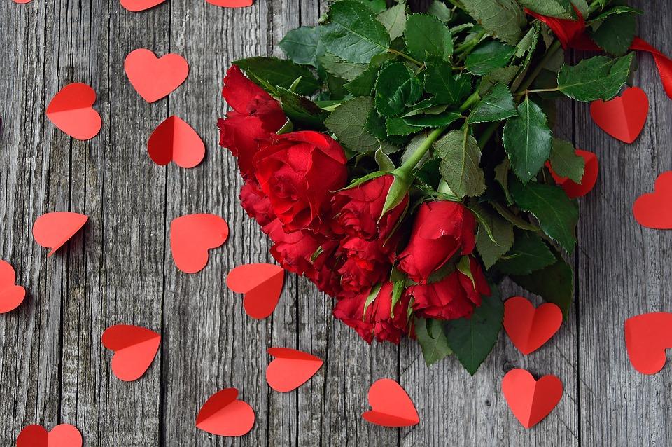 red-rose-3923288_960_720