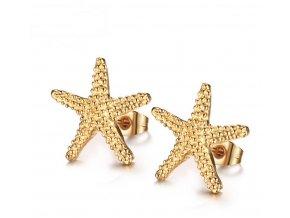 Náušnice hvězdičky z chirugické oceli SE000040