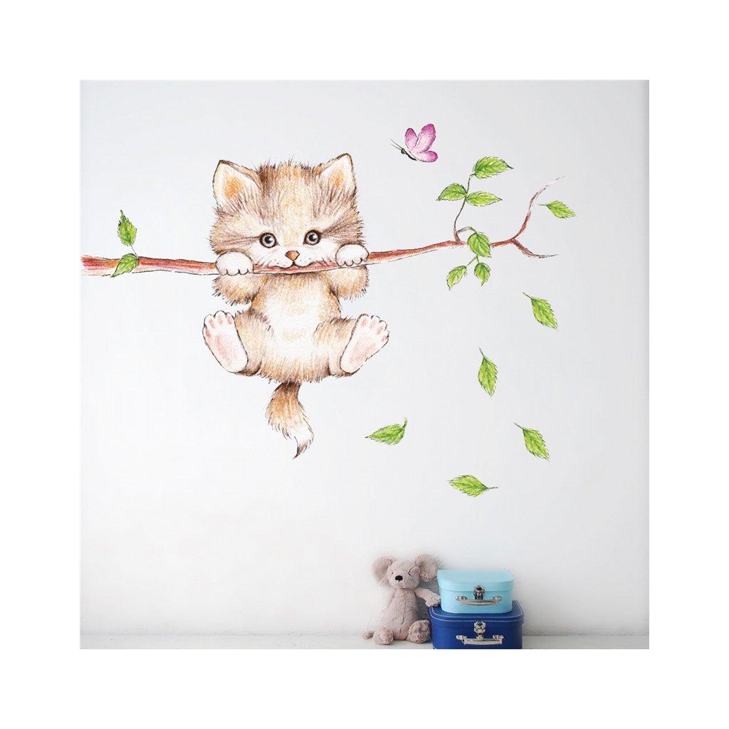 Samolepka na zeď Malé kotě na větvi