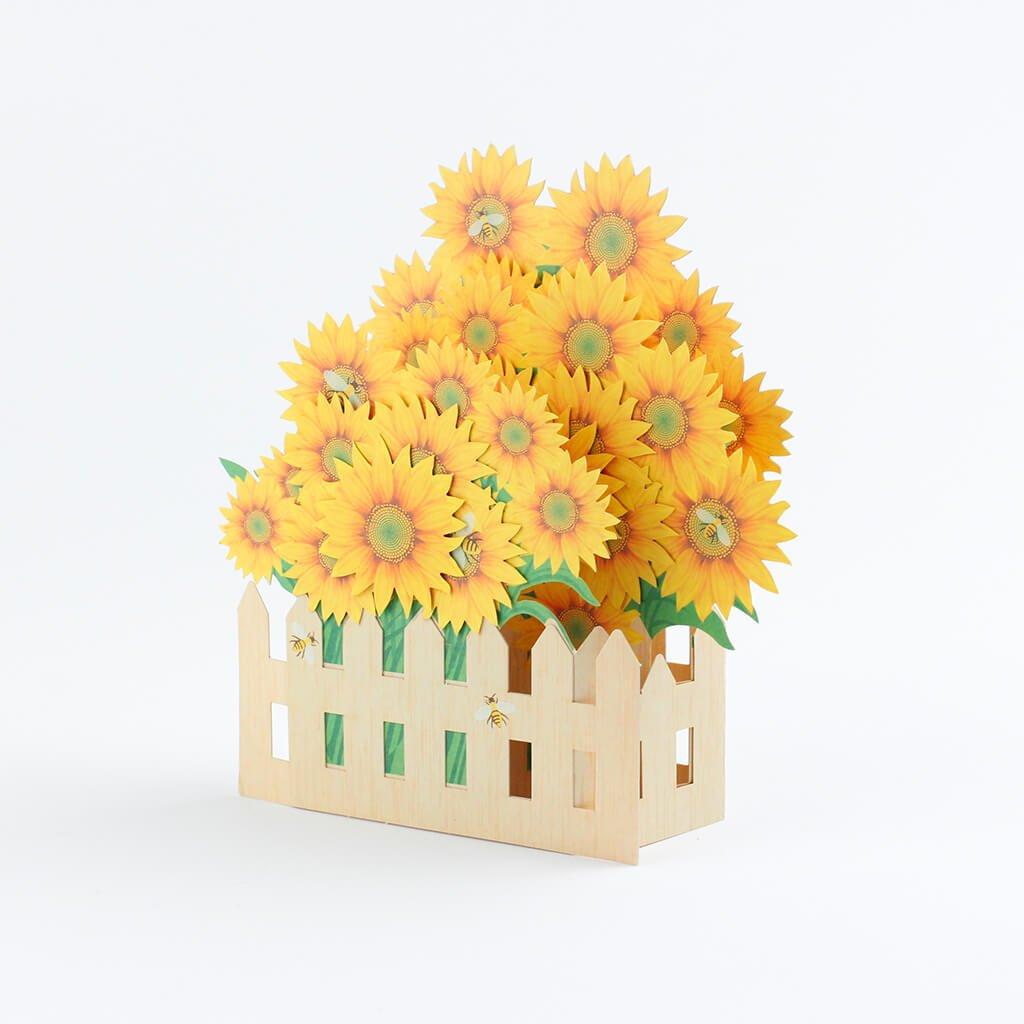 3D přání Slunečnice za plotem