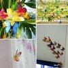 Motýlci magnet a samolepka příklady 5