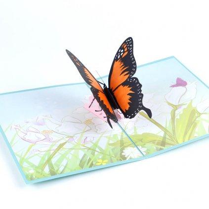 3D přání Motýl