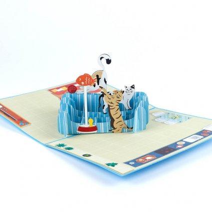 3D přání Hravé kočky