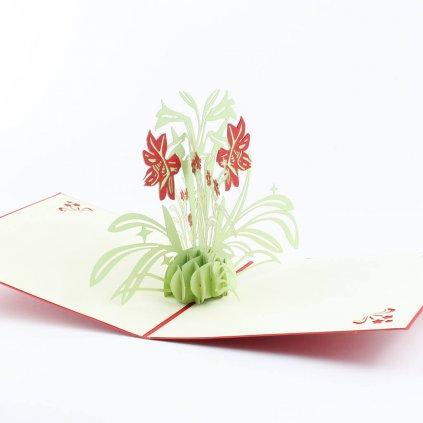 3D Přání jarní kytky