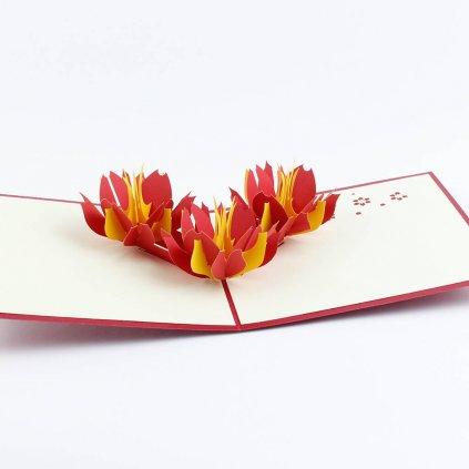 3D přání Žluto červené květy