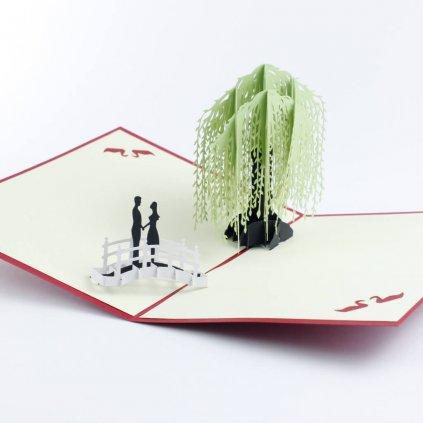 3D přání Láska pod vrbou