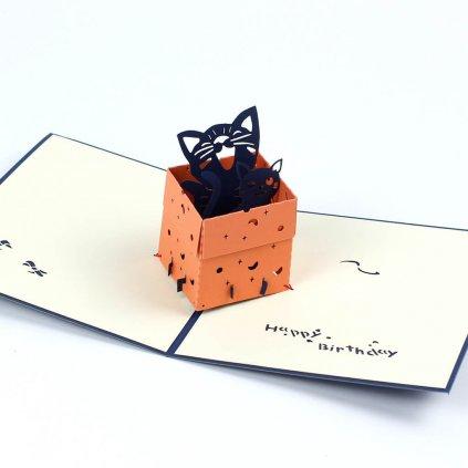 3D přání Kočičky v krabici
