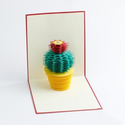3D přání Rozkvetlý kaktus