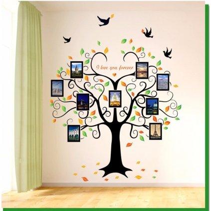 samolepka na zeď Strom zamilovaných vzpomínek