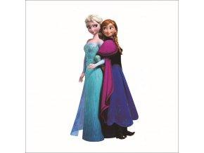 samolepka Elsa a Anna Ledové království Frozen