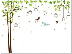 Samolepka na zeď Dárkový strom vzpomínek hnědý