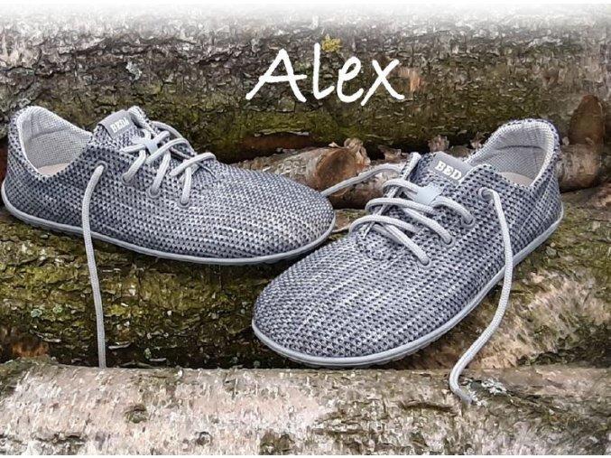 Beda Alex