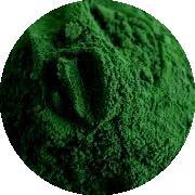 INCI - Spirulinový prášok (Spirulina Platensis Powder)
