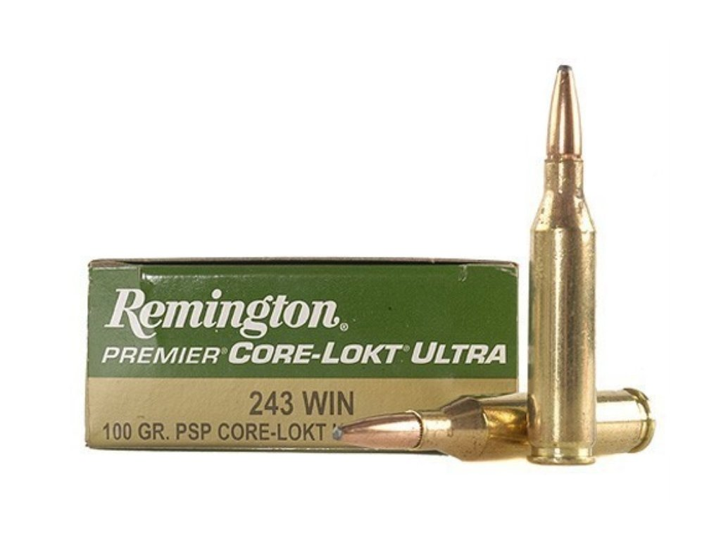 Remington corelock 243