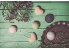 Konjakové houbičky