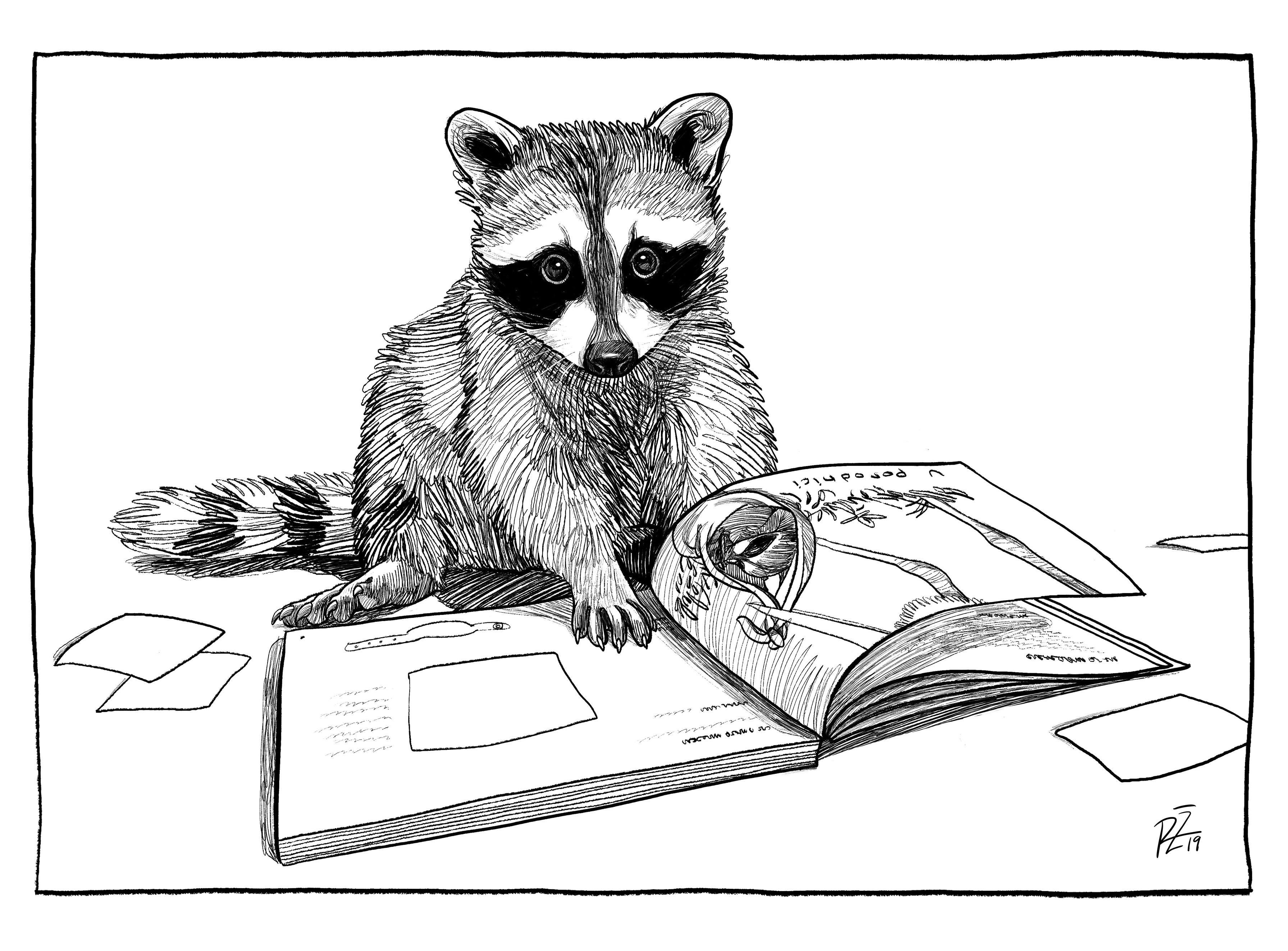 Jak se vydává knížka? Horko těžko.