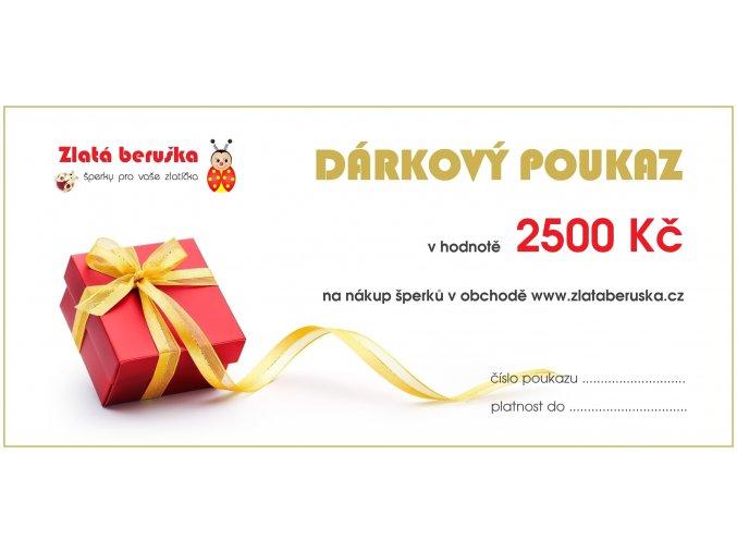 dpzb 2500 (1)