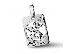 Stříbrný přívěsek - znamení Vodnář 9x11 mm