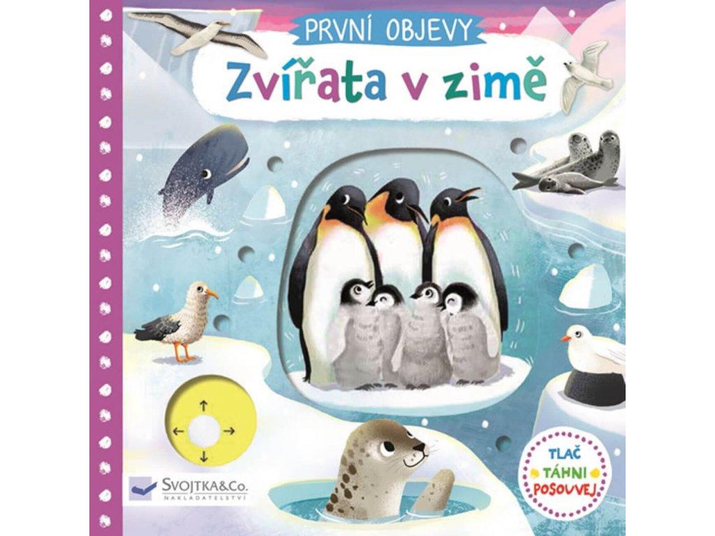 První objevy Zvířata v zimě, Jenny Wren, zlatavelryba.cz 1