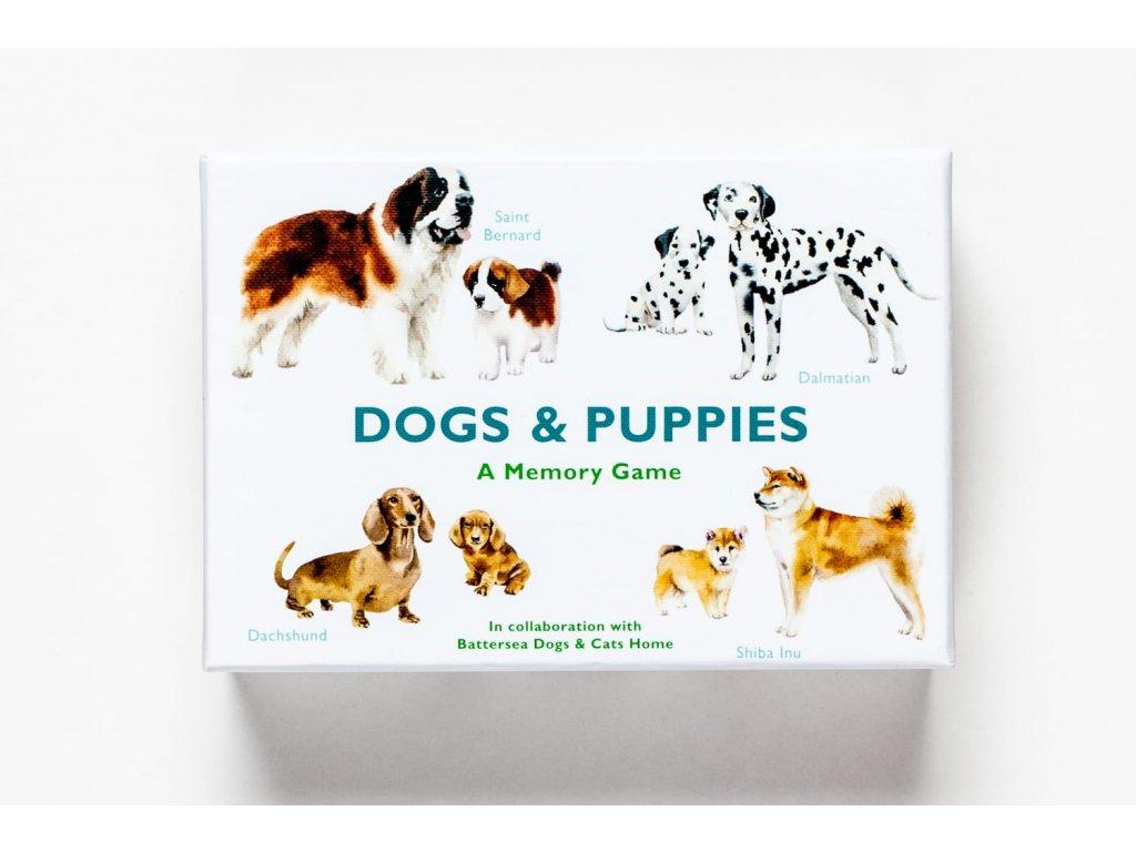 Dogs and Puppies, zlatavelryba.cz 1