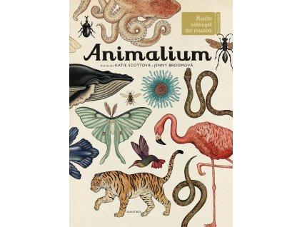 Animalium, Jenny Broomová, zlatavelryba.cz 1