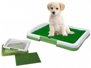 pack 6 bano ecologico mascotas perros potty pad almayor D NQ NP 1081 MLC4141647012 042013 F