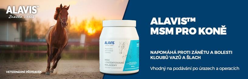 Alavis MSM 600 g pro koně