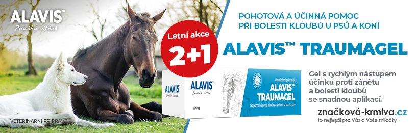Alavis Traumagel 2 + 1