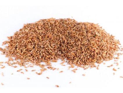 18230 kh suseny hmyz gammarus blesivec 1 kg 10 l