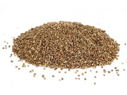 semenec (3) z1 z1