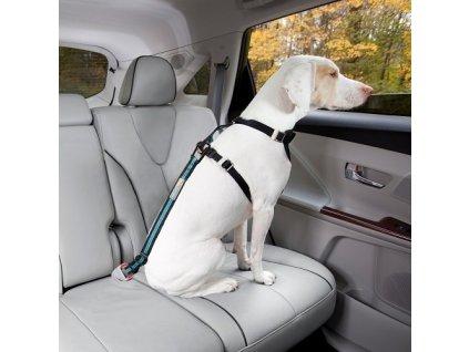 Kurgo Bezpečnostní autopás pro psa s upínacím mechanismem Direct to Seatbelt Tether - coastal blue