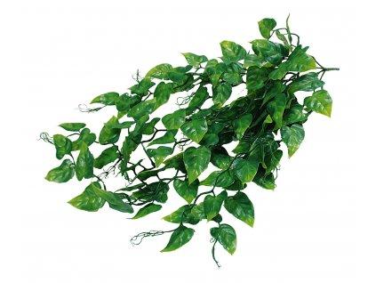 Lucky Reptile Jungle Plants Ivy Bush cca 50 cm