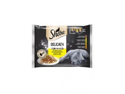 Sheba kapsa Delicacy drůbeží výběr v želé 4pack 4x85g
