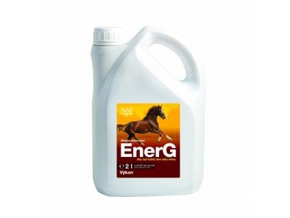 EnerG s železem pro maximální využití energie, kanystr 2 l
