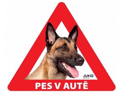 Samolepka pes v autě venkovní - belgický ovčák, malinois