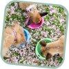Miska pro psa, cestovní, BecoBowl Travel-pink L, EKO