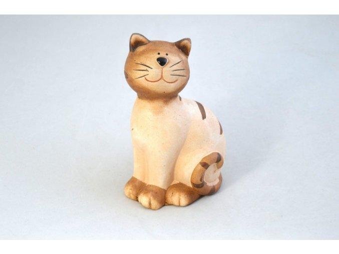 kočka s pruhy