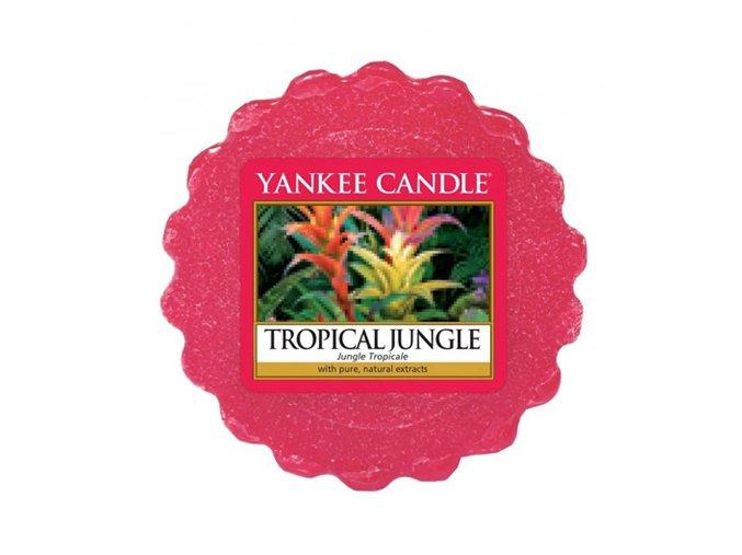 tropická džungle
