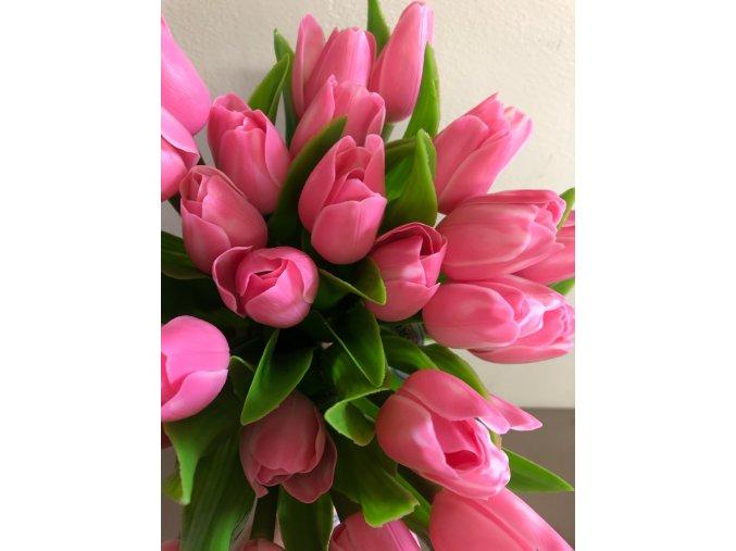 FRANCOUZSKÝ TULIPÁN pastelově růžový