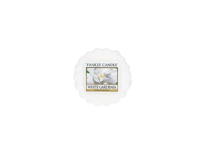 white gardenia z naší kredenc e