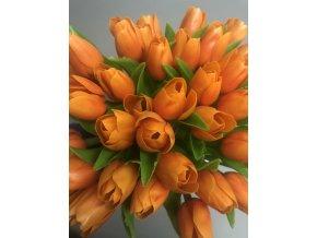 Francouzský tulipán Oranžový