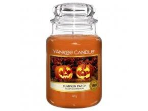 yc pumpkin patch halloween
