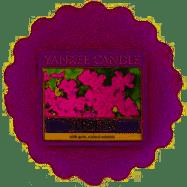 Yankee Candle - vonný vosk - VERBENA
