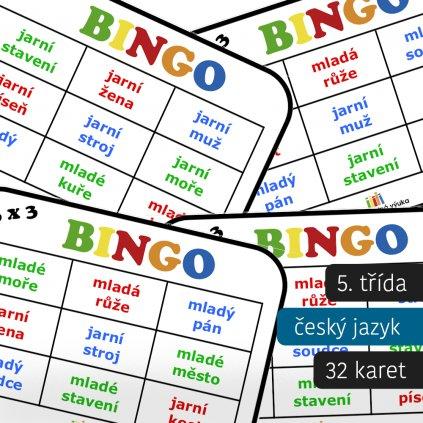 bingo vzory podstatných a přídavných jmen