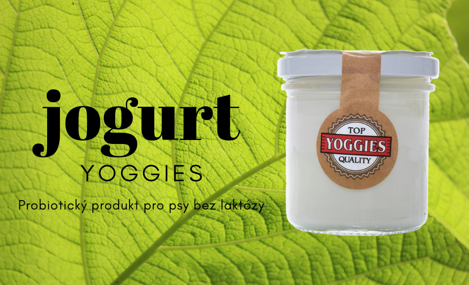 Jogurt Yoggies
