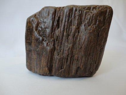 Fosilní ( zkamenělé ) dřevo - ARAUKARIT 03